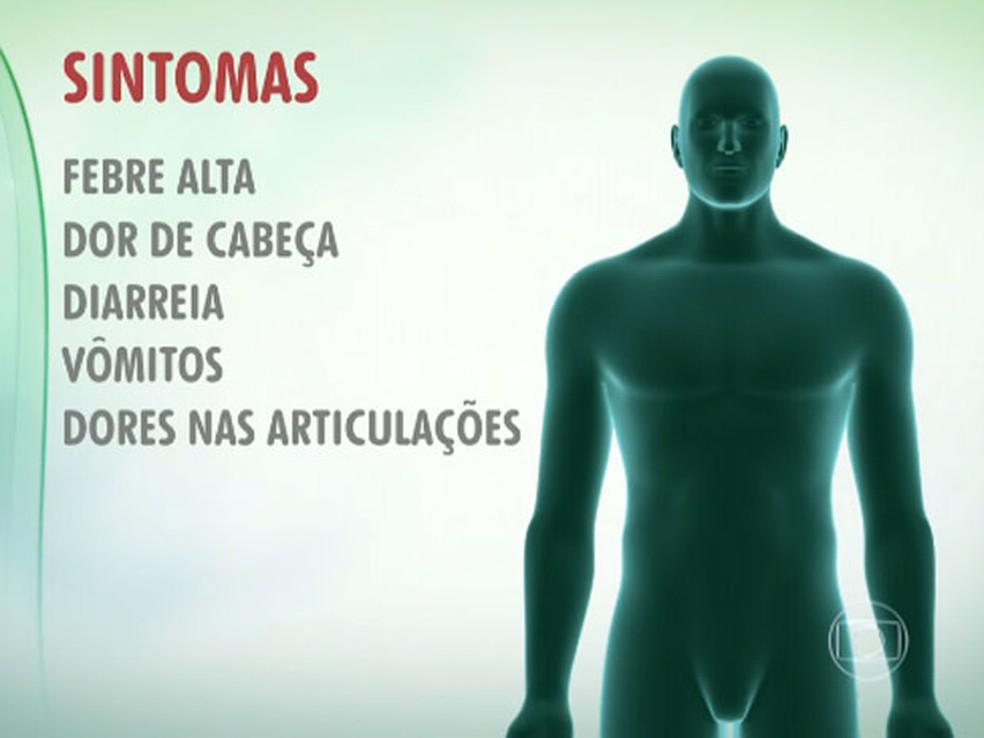 Veja sintomas da febre chikungunya — Foto: Reprodução/TV Globo