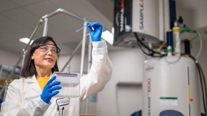 Laboratório da BMS, que tem imuno-oncológicos no mercado brasileiro; medicamento se concentra na defesa do organismo (Foto: ROBERT BRUSCHINI via BBC News)