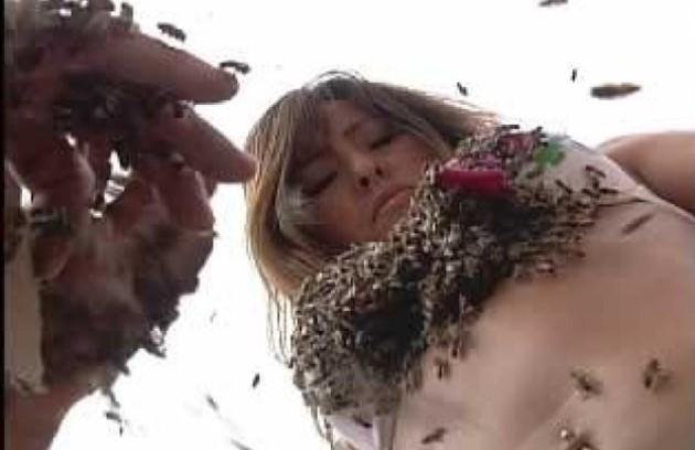 Sabrina já ficou com o corpo coberto de abelhas (Foto: Reprodução da internet)