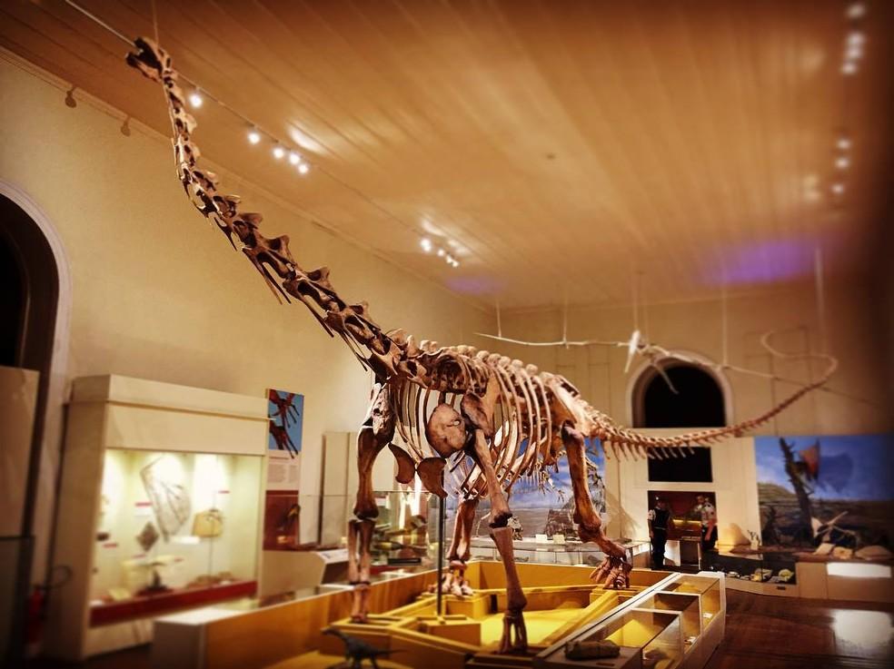 Exposição inaugurada em julho no Museu Nacional trazia o Maxakalisaurus topai, o primeiro dinossauro de grande porte montado no Brasil (Foto: Divulgação/Museu Nacional)