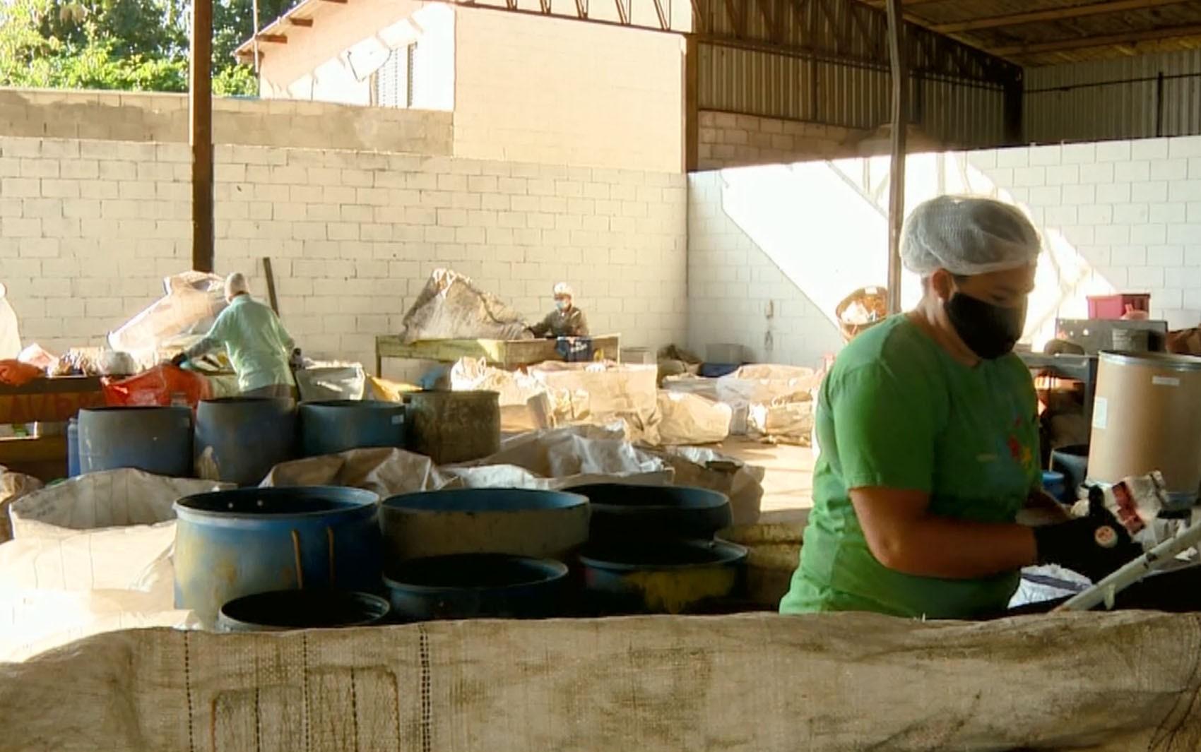 Covid-19: trabalhadores da coleta seletiva retomam separação de recicláveis após 6 meses parados em Campinas