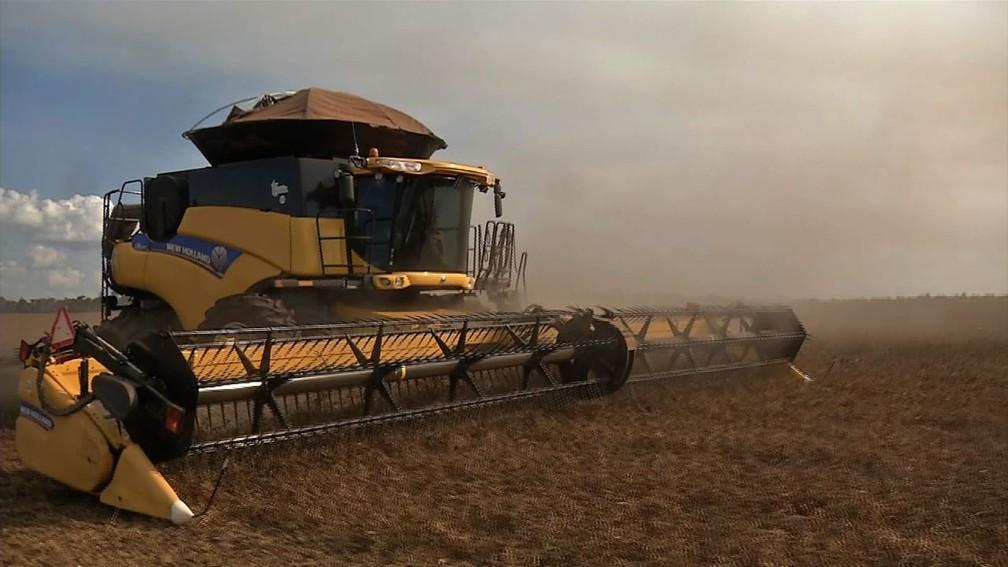 O estado é o principal produtor de milho e soja no Brasil e líder na produção de grãos — Foto: Alexandre Perassolli/TVCA