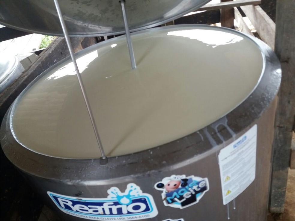 Preço do litro de leite produzido custa em média R$ 0,85 no mercado, o que movimenta a economia e gera empregos  na região (Foto: Emater-RO/Divulgação)