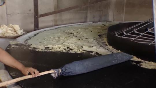Embrapa capacita produtores de mandioca no Triângulo Mineiro