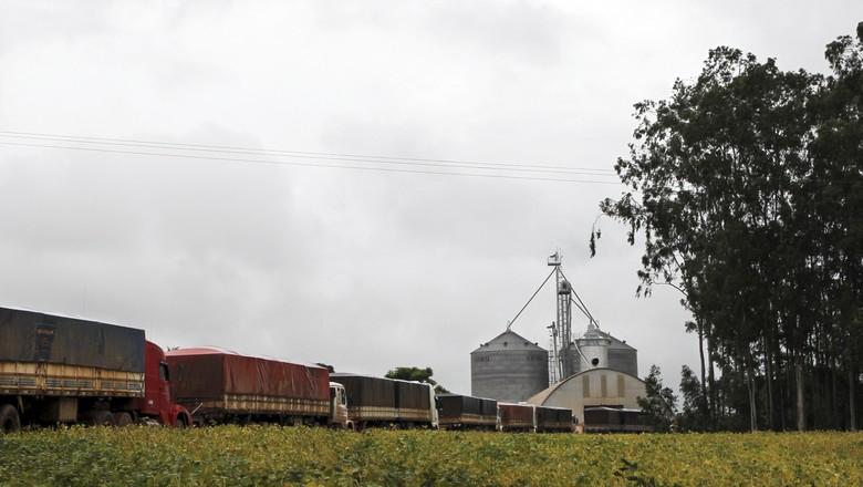 Caminhões aguardam carregamentos com soja em Campo Verde (MT) 08/02/2013 (Foto: Paulo Whitaker/Reuters)