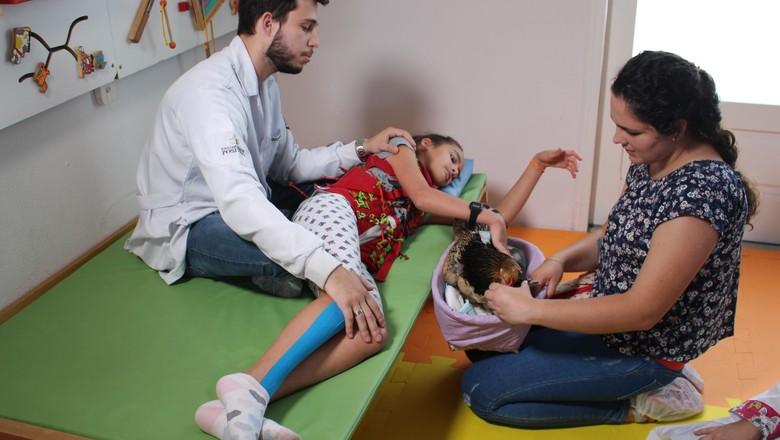 Galinha atua como co-terapeuta em sessão de fisioterapia no CERNE, em Curitiba (Foto: Divulgação)
