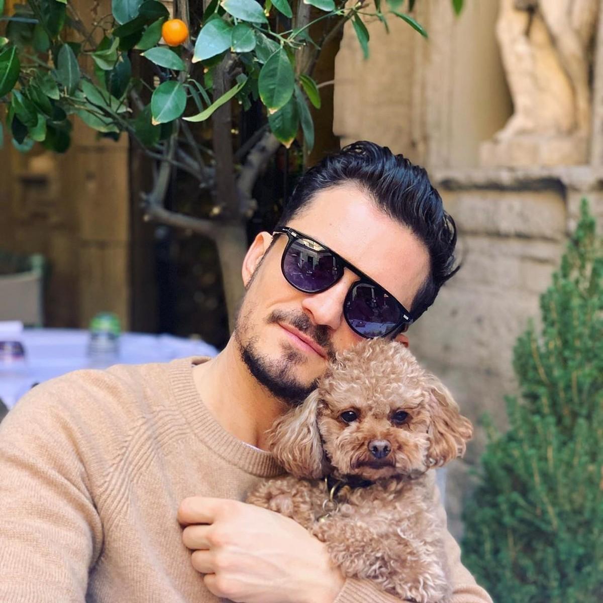 Orlando Bloom relata desaparecimento de cachorro e oferece recompensa: 'Coração está partido'   Pop & Arte