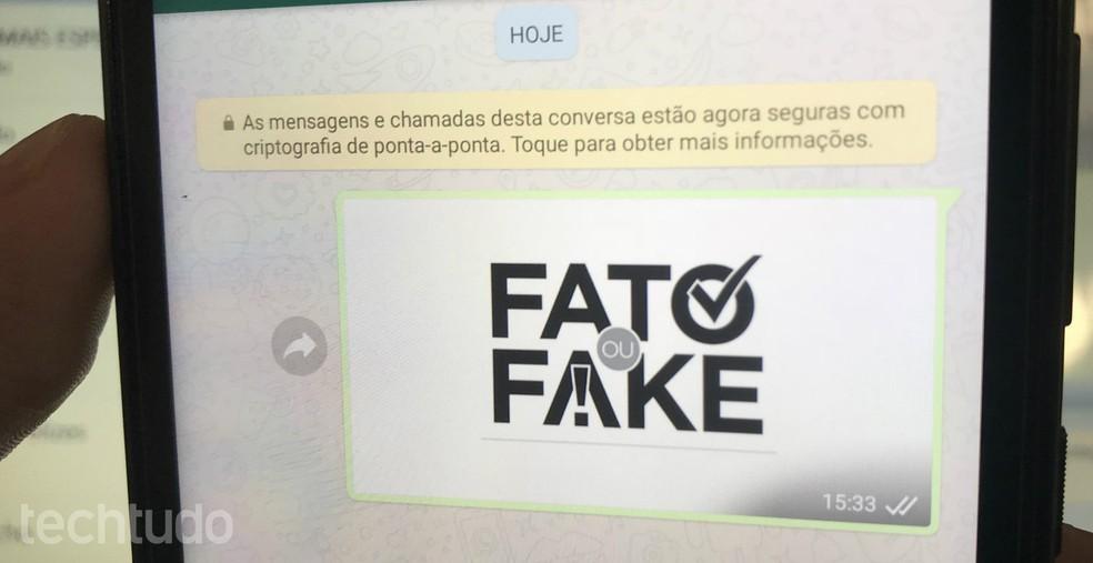 4223f9f08e ... Saiba denunciar fake news e mensagens impróprias no WhatsApp — Foto   Rodrigo Fernandes TechTudo