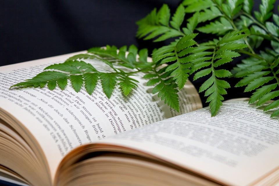 livro-agroecologia (Foto: Max Pixel/Creative Commons)