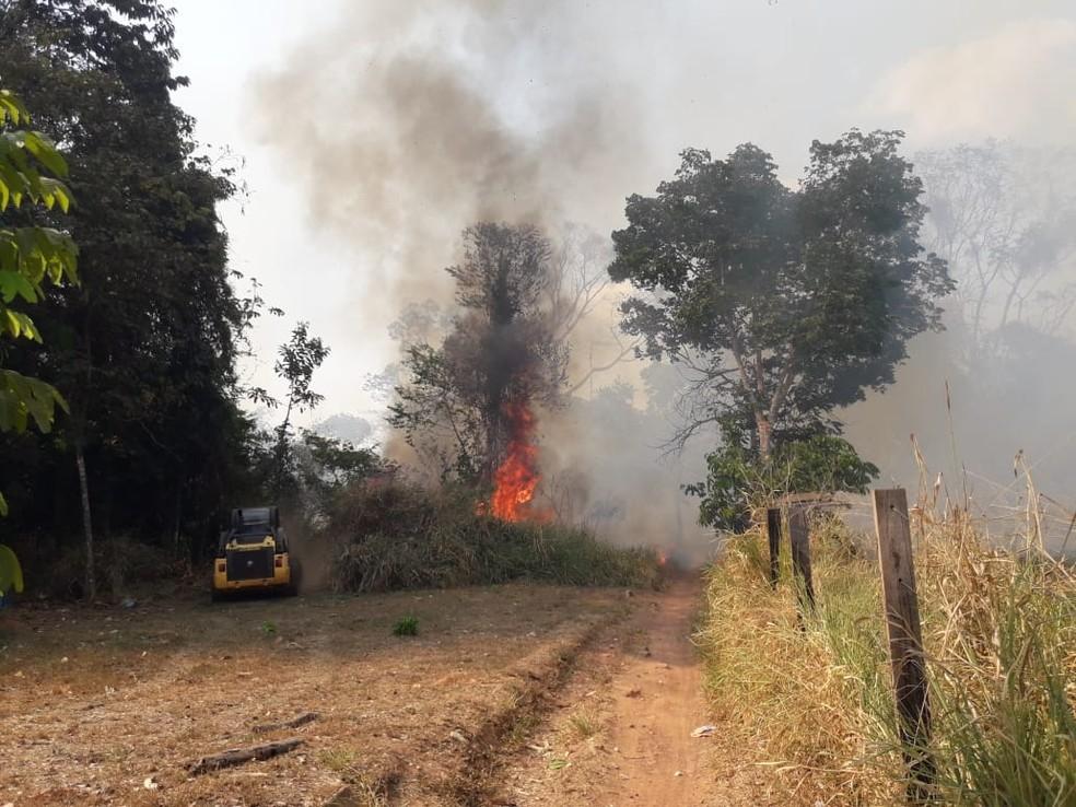 Fogo atinge vegetação de Matinha São José, em Espigão — Foto: Secretaria Municipal de Meio Ambiente/Divulgação
