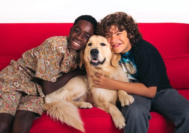 Série preferida dos donos de animais de estimação é Netflix (Foto: Divulgação)