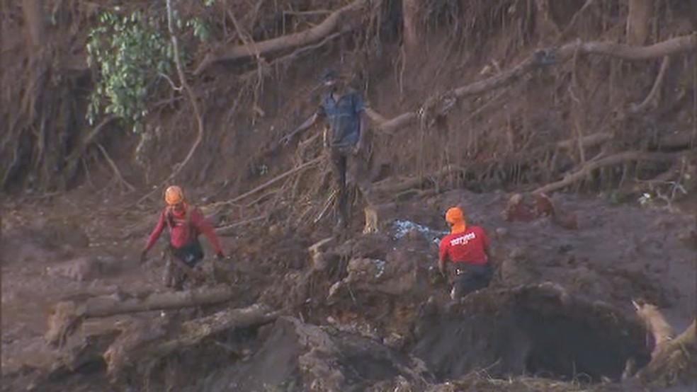 Brigadista voluntário encontra ônibus enquanto tentava resgatar uma vaca no meio da lama em Brumadinho — Foto: Reprodução/TV Globo