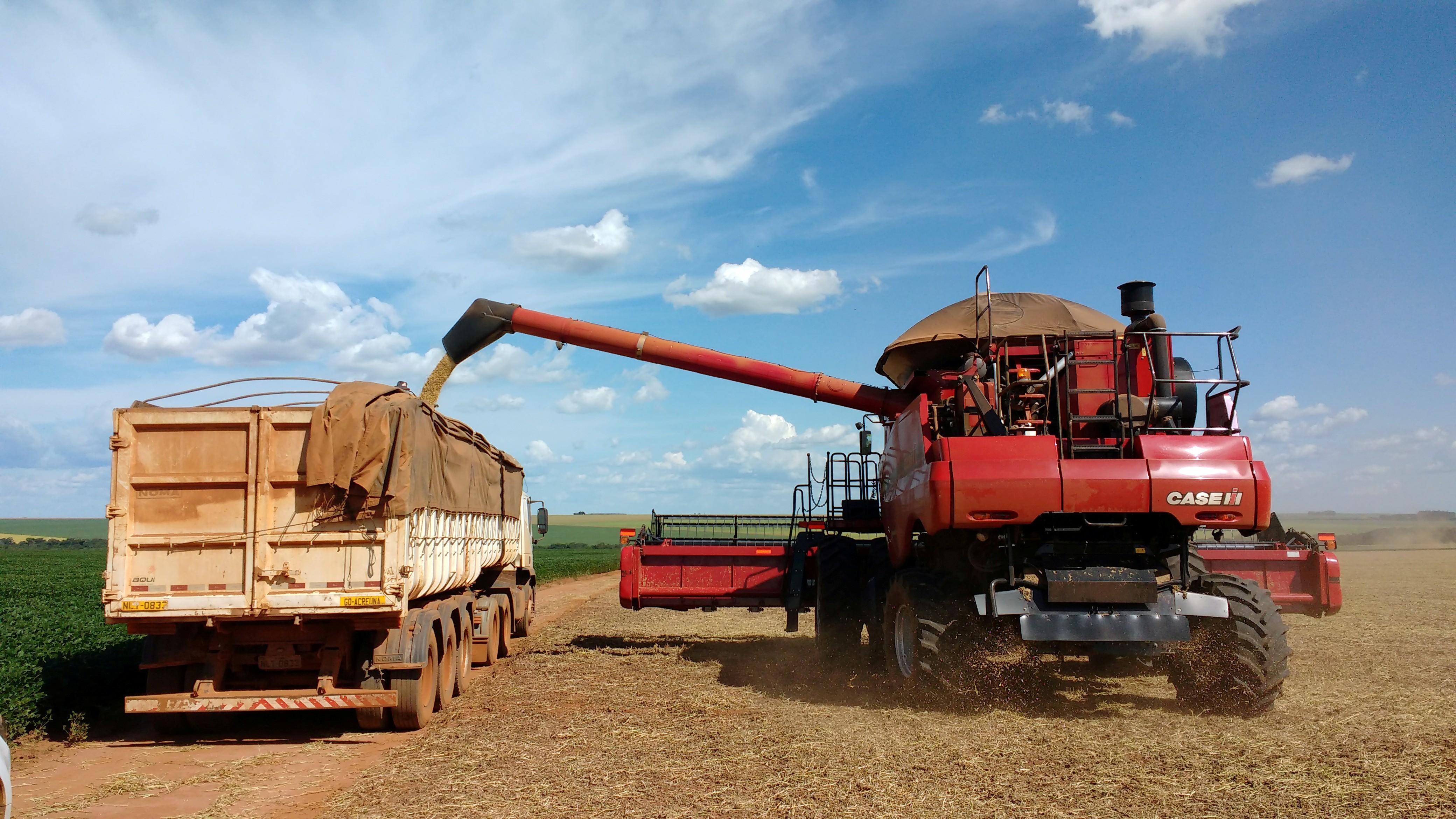 Carregamento de soja em Campo Verde  (Foto: Gustavo Bonato/Reuters)