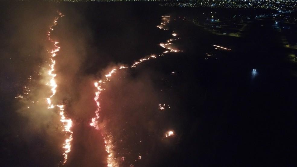 Área incendiada em Vilhena — Foto: Semma/Divulgação