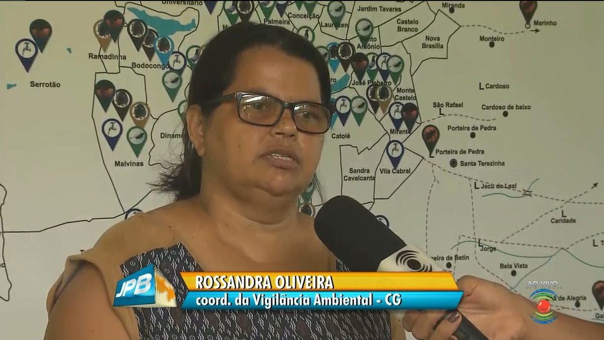 Todos os bairros de Campina Grande estão com infestação do Aedes aegypti, diz pesquisa