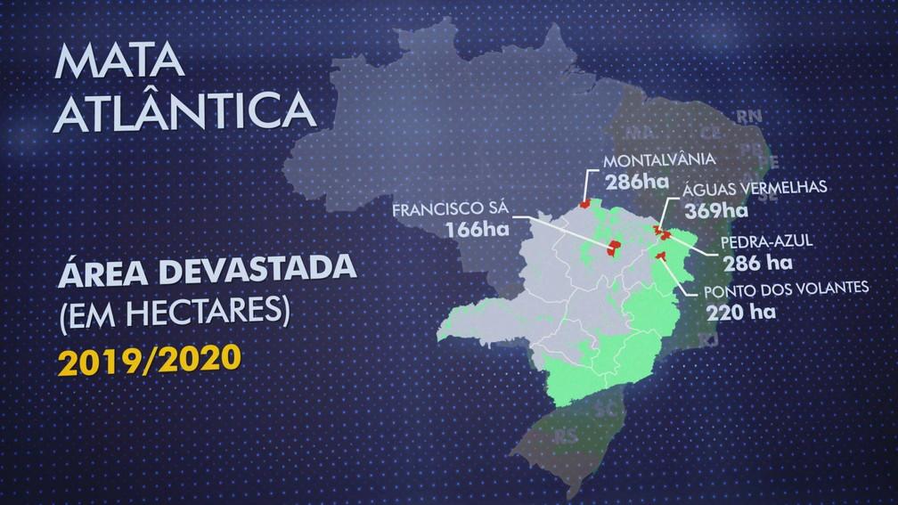 Cinco das 10 cidades que mais desmataram estão em minas gerais.   — Foto: Reprodução/TV Globo