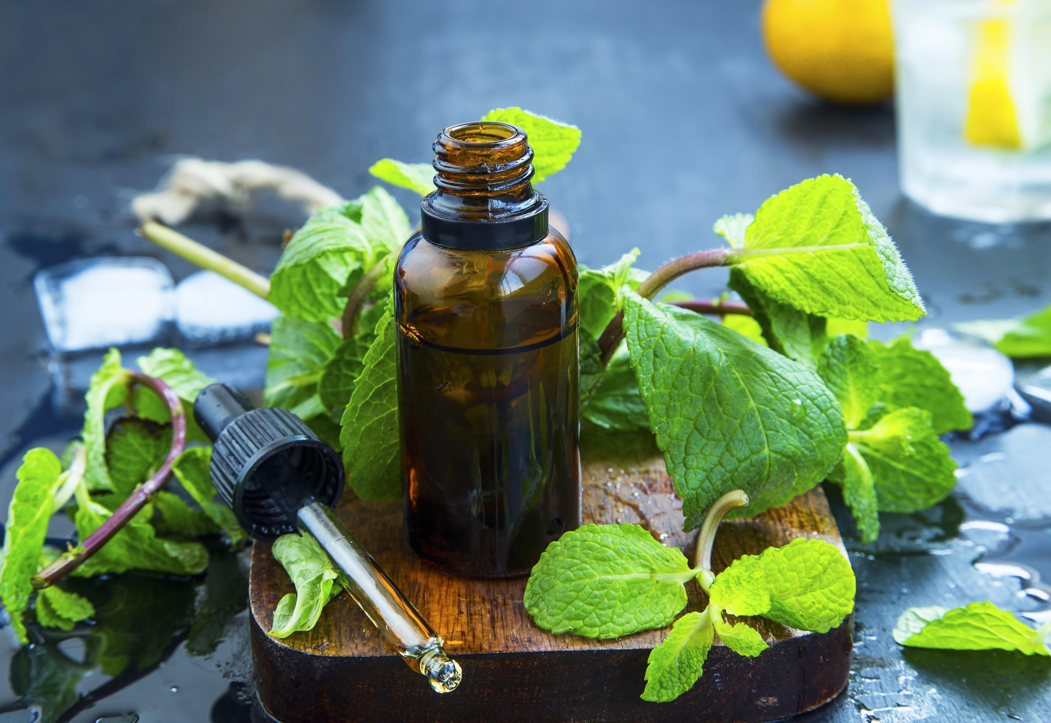 Para o banheiro, escolha um aroma fresh de hortelã (Foto: Thinkstock)