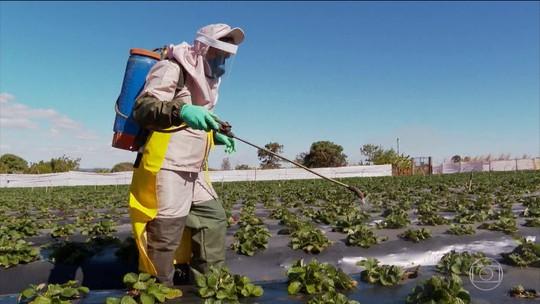 Anvisa aprova novo Marco Regulatório de classificação para agrotóxicos
