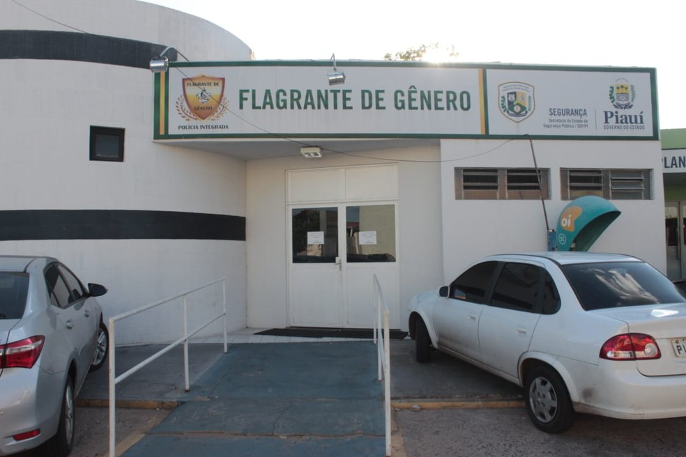 Central de Flagrantes de Gênero de Teresina — Foto: José Marcelo/G1