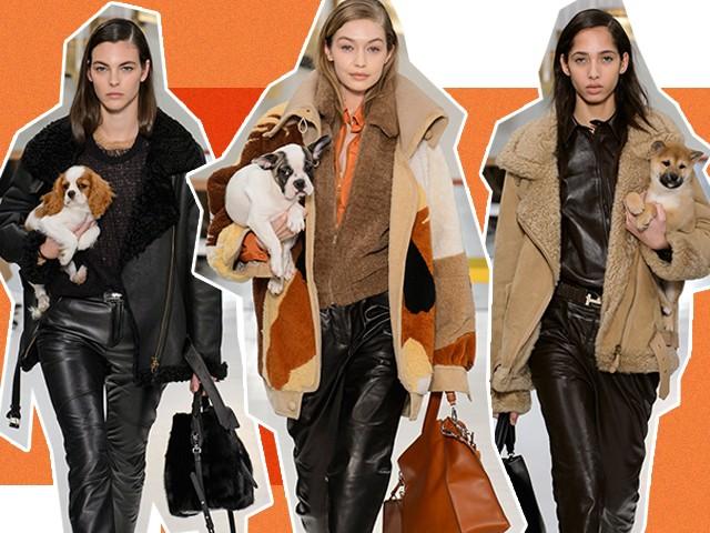 No desfile da Tods, modelos entraram na passarela segurando cachorros fofíssimos (Foto: Imaxtree)