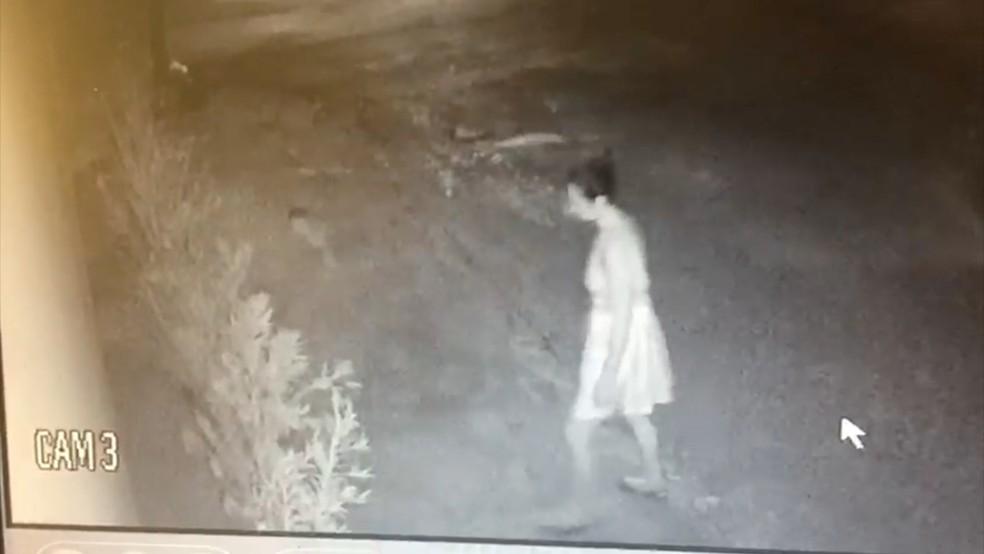 Casal foi flagrado por câmeras durante furto de plantas (Foto: Divulgação)