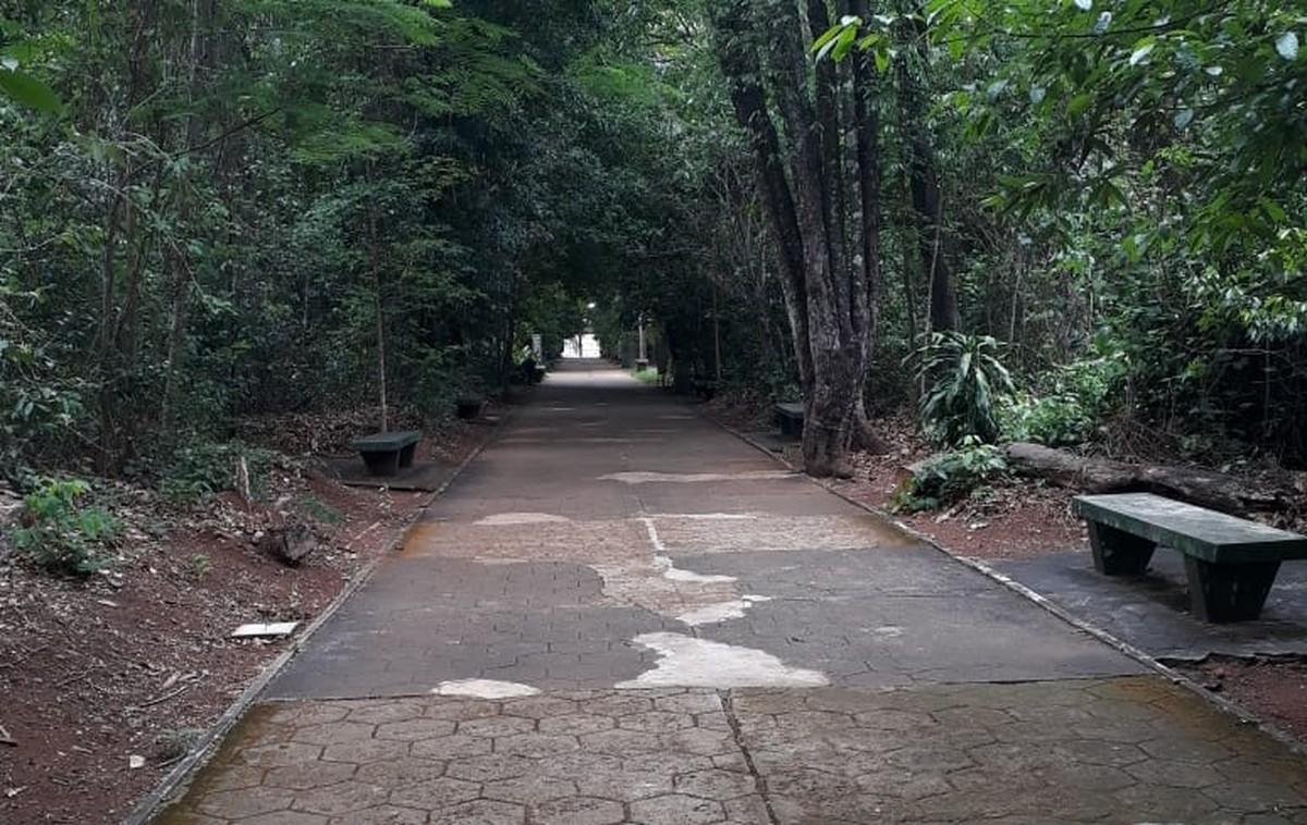 Bosque John Kennedy em Araguari é reaberto ao público após temporal causar estragos - G1
