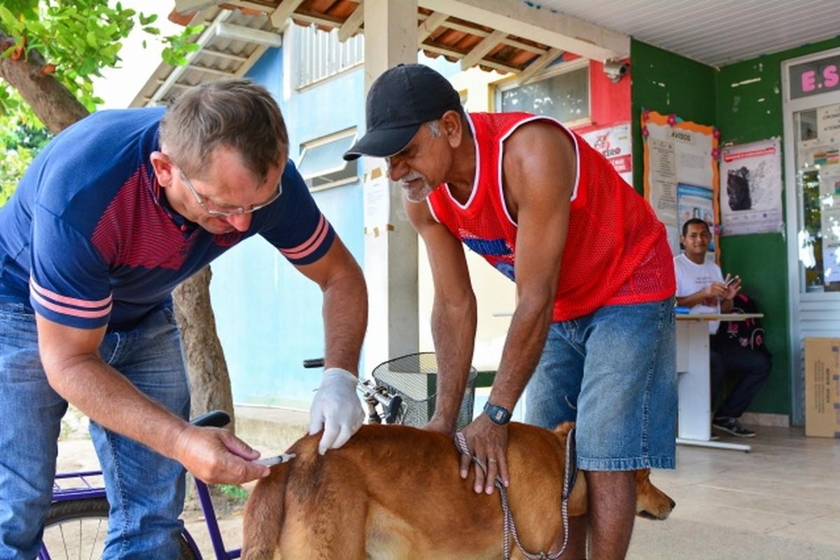 Dia D de vacinação contra raiva ocorre neste sábado (25) em Boa Vista