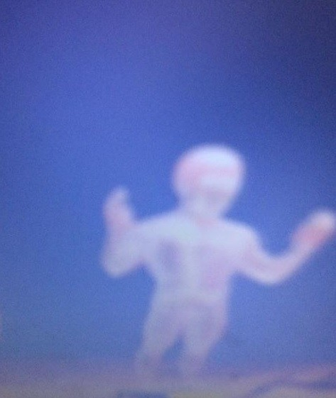 'Anjo da guarda' fotografado por menina americana