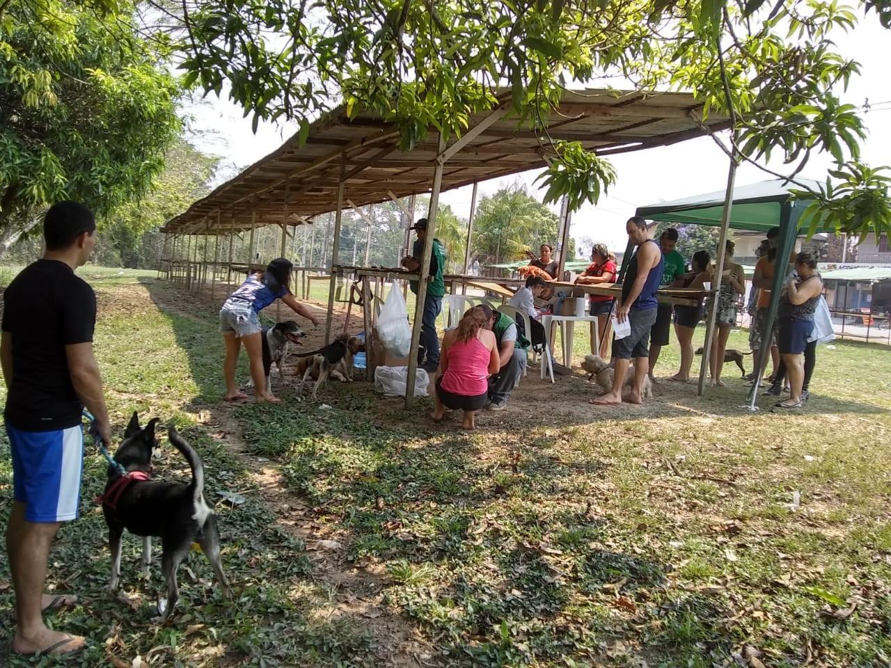 Mais de 200 animais são vacinados contra raiva em mais uma ação em Rio Branco - Notícias - Plantão Diário