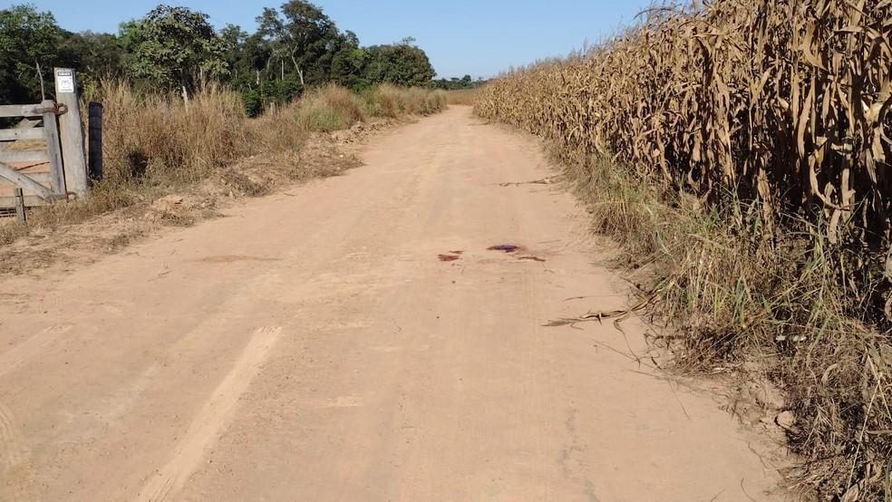 Luciene Borges, de 34 anos, foi assassinada em estrada na zona rural de Sorriso — Foto: Divulgação
