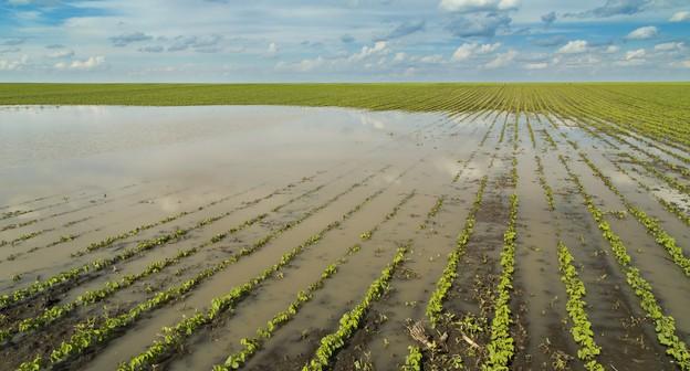 Final de semana terá chuvas generalizadas no Centro-Sul do Brasil