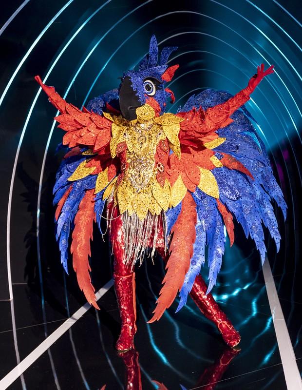 Participante do The Masked Singer Brasil com fantasia de arara (Foto: Kelly Fuzaro/TV Globo)