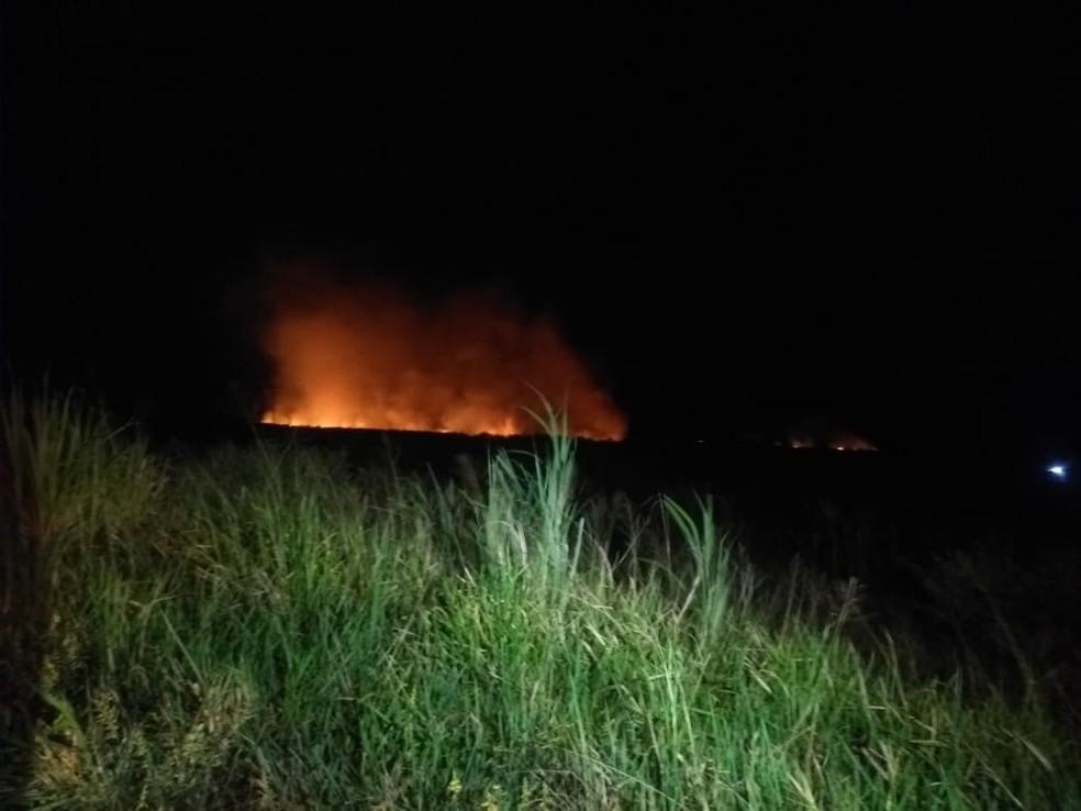 Incêndio atinge área de mata de Ceará-Mirim — Foto: Acson Freitas/Inter TV Cabugi