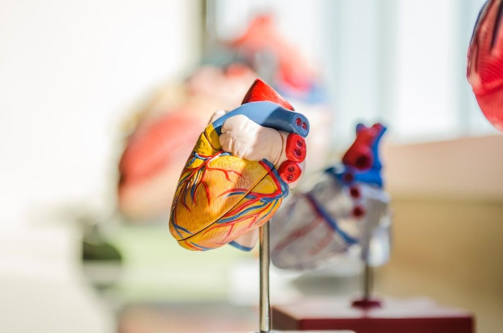 Fibrilação atrial: batimento cardíaco irregular pode aumentar risco de demência — Foto: Pixabay