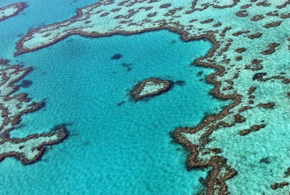 Trecho da Grande Barreira de Corais, na Austrália (Foto: Sarah Lai/AFP)