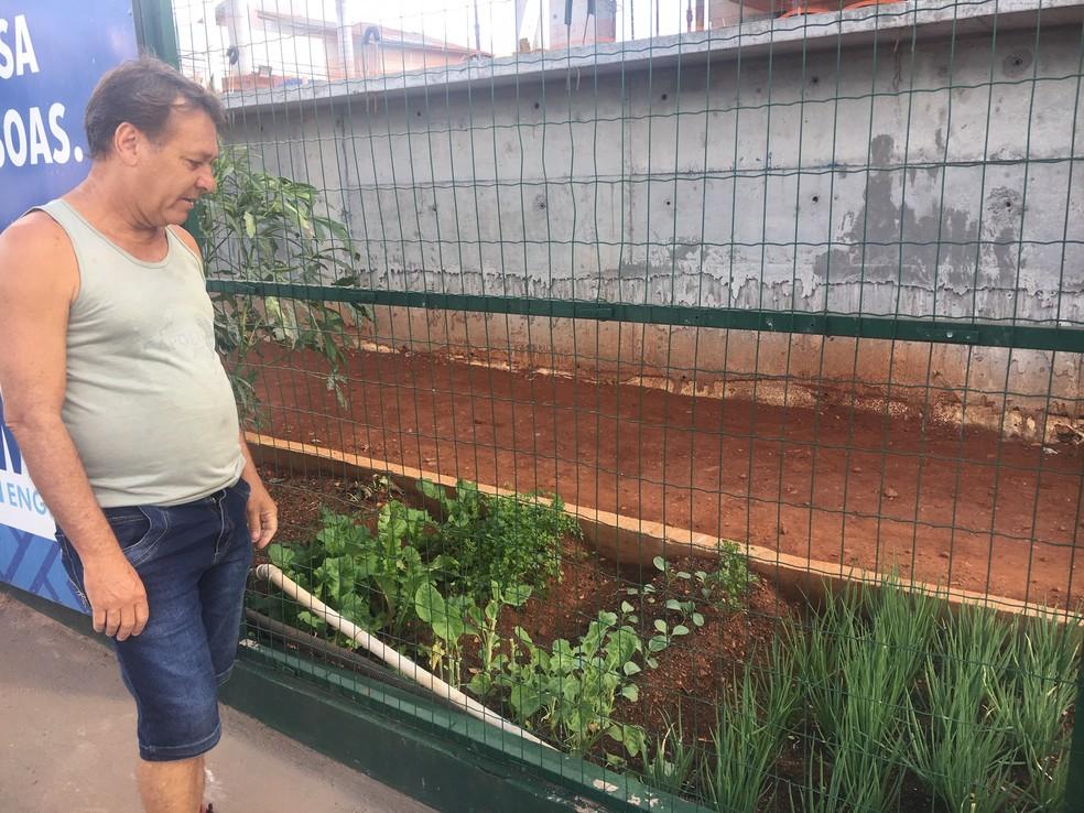 Helder Luiz, morador do Setor Bueno elogiou a criação da horta no canteiro de obras em Goiânia, Goiás — Foto: Lis Lopes/G1 GO