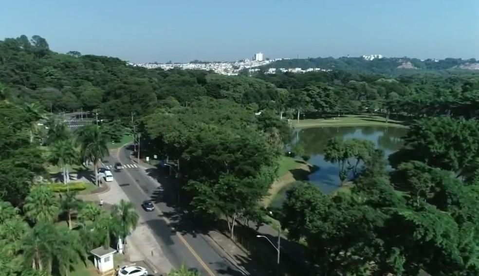 Área arborizada em Piracicaba (SP) — Foto: Ricardo Custódio