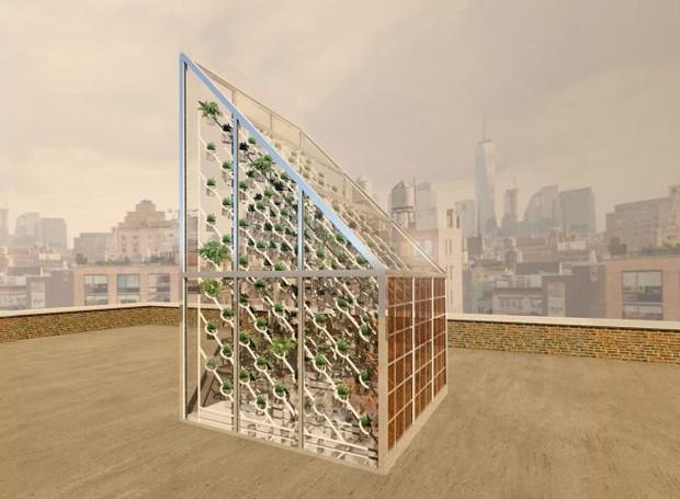 A estufa sustentável é uma ideia para solucionar futuras crises alimentícias (Foto: Deezen/ Reprodução)