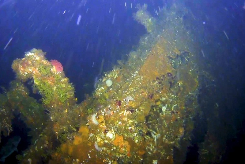 Destroços do navio encontrados por uma equipa norte-americana (Foto: Divulgação)