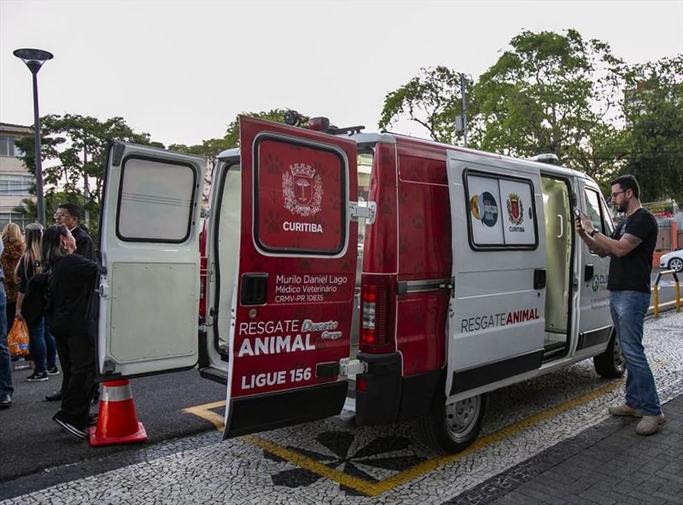 Unidade de resgate animal está funcionando, em Curitiba, desde segunda-feira (30) — Foto: Daniel Castellano/SMCS