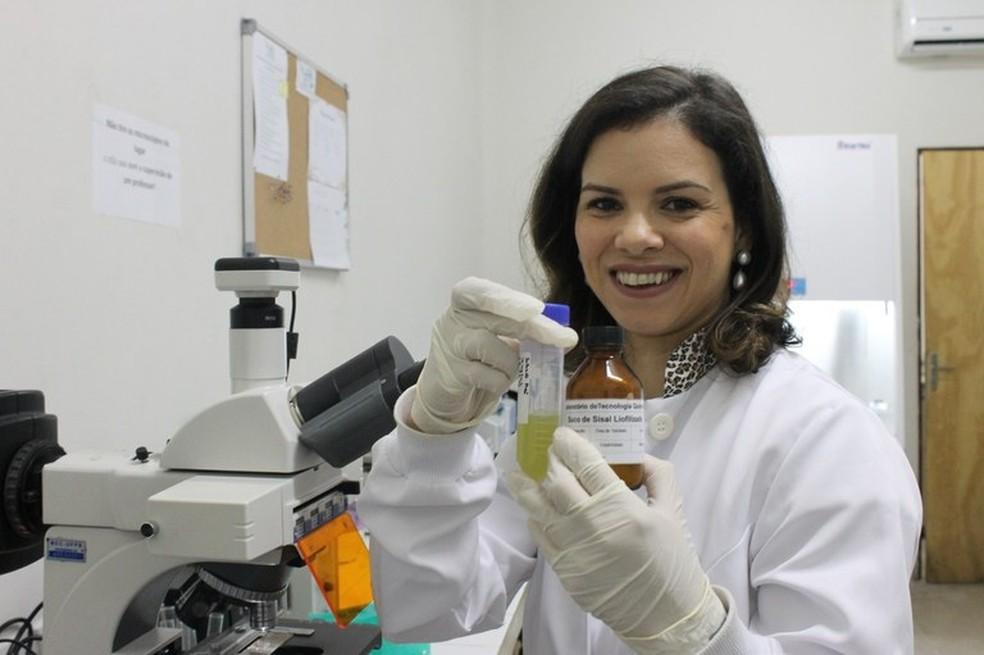 Pesquisadora da UFPB cria inseticida que mata o mosquito da dengue — Foto: Raíssa Helena/UFPB/Divulgação