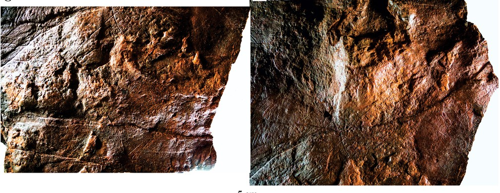 Rocha na região de Nioaque (MS) tem característica de esponja e retém água — Foto: Rafael Costa da Silva/ Divulgação