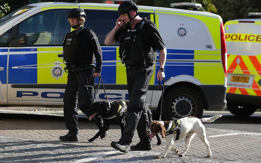 Policiais trabalham com cães farejadores (Foto: Daniel Leal Olivas / AFP Photo)