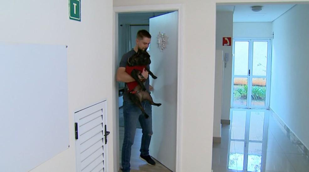 O bulldog Bruce mora no apartamento do vendedor Pablo Nierotka, em Ribeirão Preto, SP  — Foto: Ronaldo Gomes/EPTV