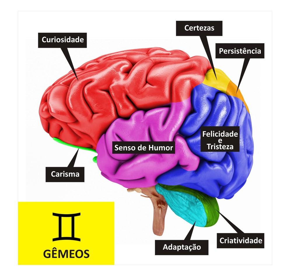 Cérebro de Gêmeos  (Foto: TV Globo )