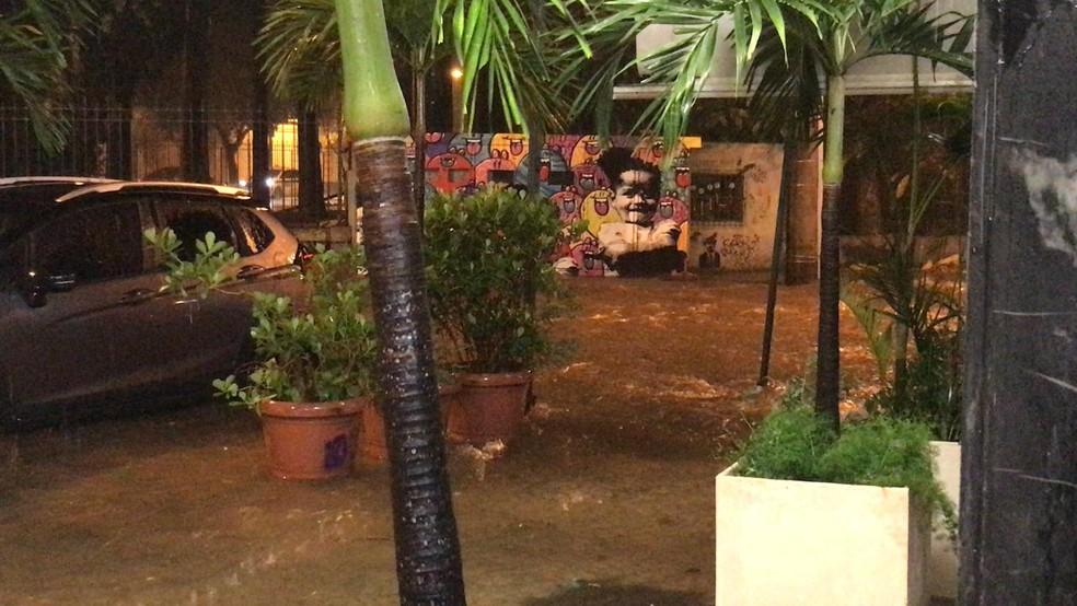 Chuva forte atingiu também a região do Jardim Botânico — Foto: G1