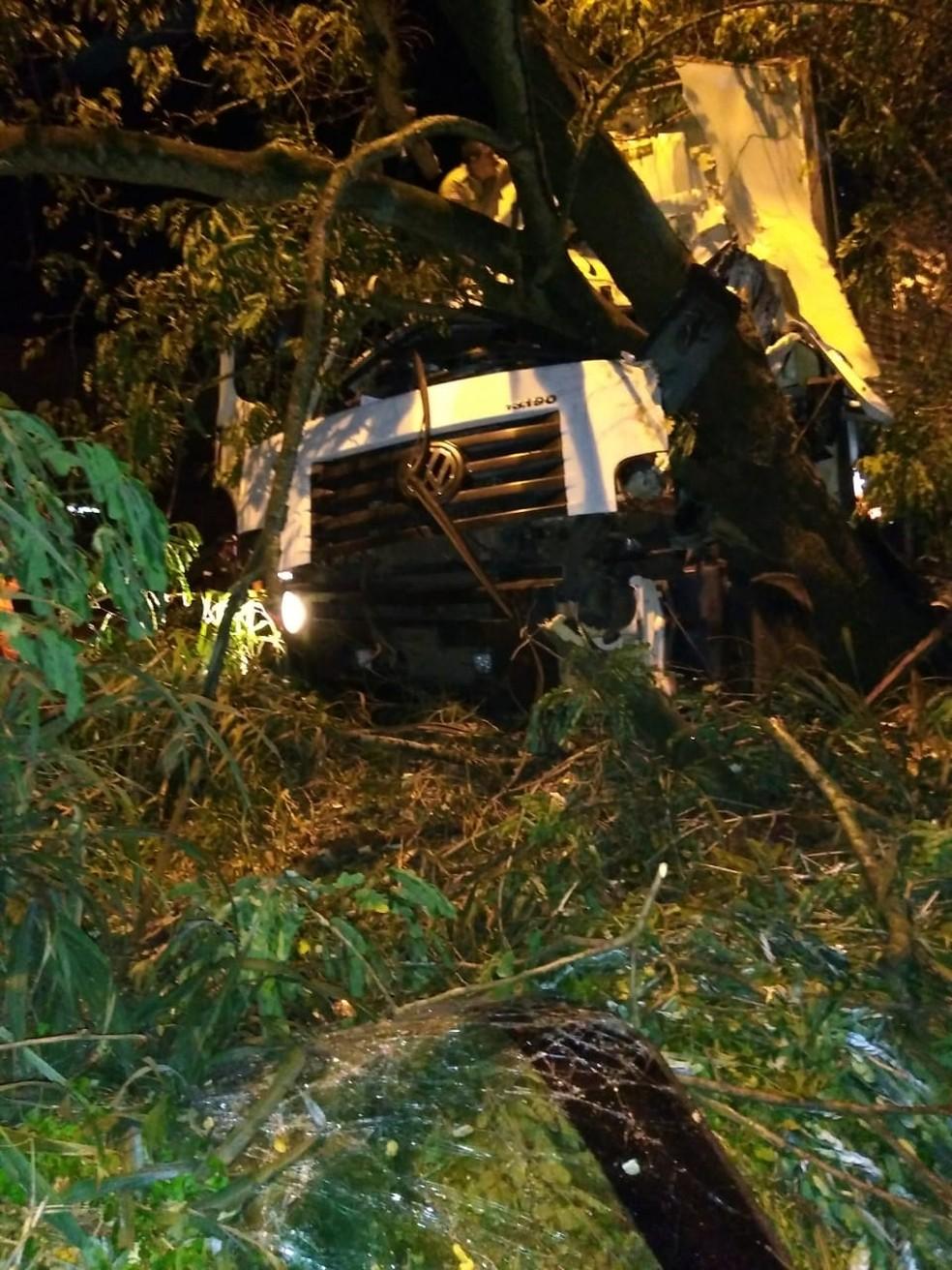 Condutor de um caminhão colidiu em uma árvore km 15 da BR-135 em Pedrinhas — Foto: Divulgação/Polícia Rodoviária Federal