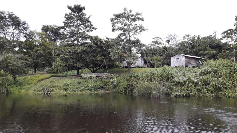 Arqueólogos do Instituto Mamirauá identificaram 48 ilhas construídas por indígenas ao longo de 4 anos.  — Foto: Márcio Amaral/Instituto Mamirauá