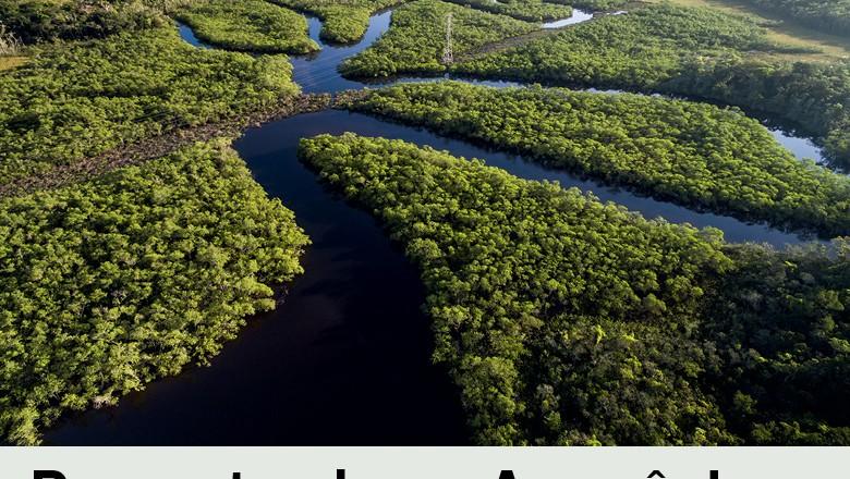 Amazonia (Foto:  )