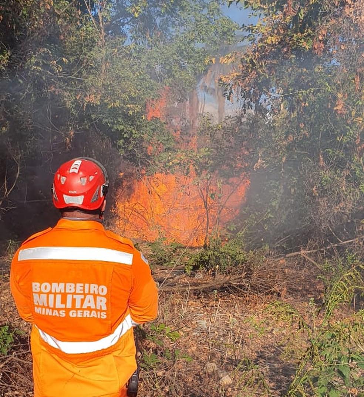 Incêndio no Vila Oliveira consumiu 87 hectares de vegetação — Foto: Corpo de Bombeiros/Divulgação